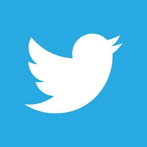 Twitter Ulldeter